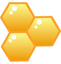 Honey bee hives vector