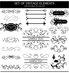 Calligraphic vintage set vector