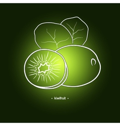 Image kiwifruit in the contours vector