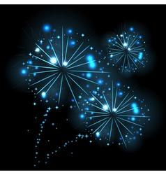 Holiday firework vector