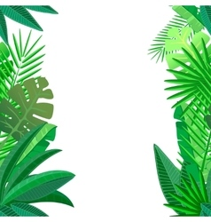 Leaves of tropical palm on white seamless pattern vector