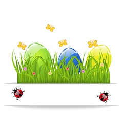 Easter colorful eggs in green grass with space for vector