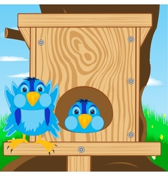 Bird sparrow and bird house vector