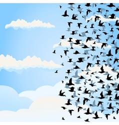 Flight of birds vector