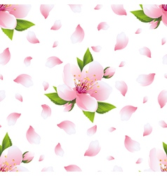 Seamless pattern with sakura blossom and petals vector