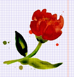 Composition with flower peony vector