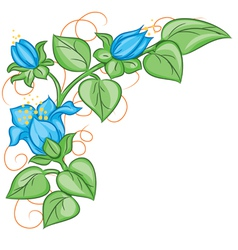 Floral decoration element vector