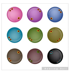 Set of bowling balls on white background vector