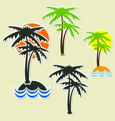 Different palm vector