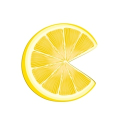 Yellow lemon vector