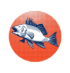 Sea bass retro vector