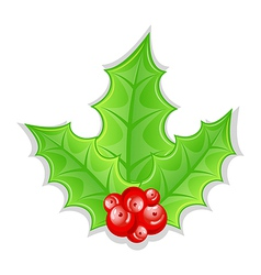 Christmas decoration holly berry branches isolated vector