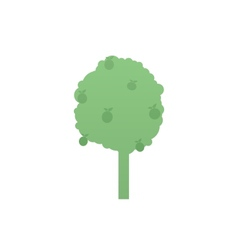Apple tree vector