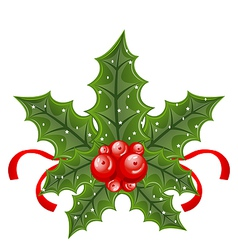 Christmas holly berry branches and ribbon isolated vector