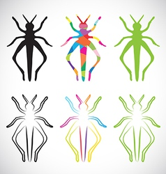 Grasshoppers vector
