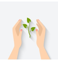 Green plant in hands symbol vector