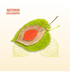 Autumn background with leaves linden and cherry vector