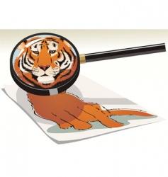 Cat magnifier vector