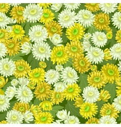 Seamless yellow white chrysanthemum backgrounds vector