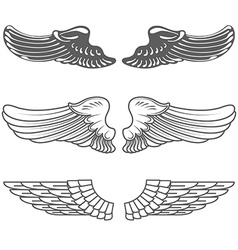 Set of wings isolated on white vector