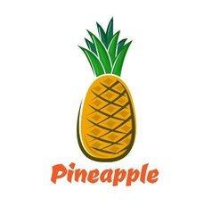 Cartoon fresh pineapple fruit poster vector