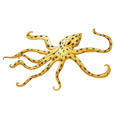 Blue-ringed octopus vector
