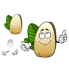 Smiling open pistachio nut cartoon character vector