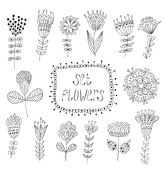Hand drawn vintage floral elements flowers vector