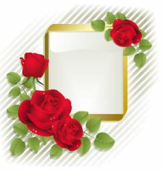 Roses with frame vector