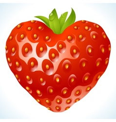 Strawberry heart vector
