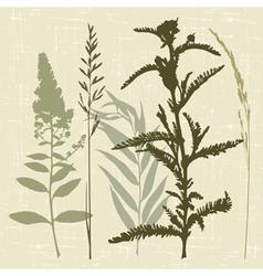 Field grass vector