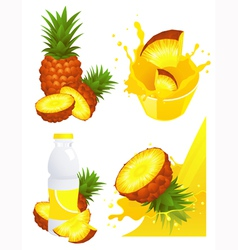 Ananas products vector