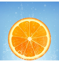 Orange in water vector