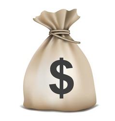 Money bag vector