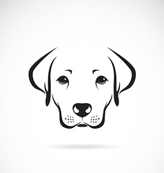 Image of an dog labrador vector