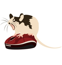 Mouse on a computer mouse vector