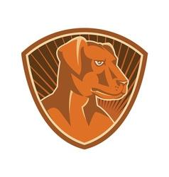 Sheepdog border collie shield retro vector
