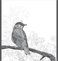 Hand drawn bird on branch vector