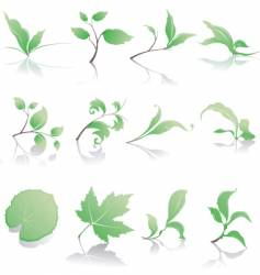 Plant design elements vector