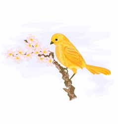 Bird on a branch with white flowers vector