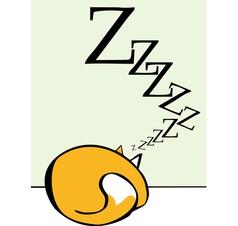 Sleeping cat vector