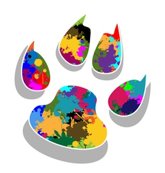 Paw prints colorful vector