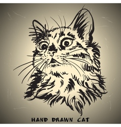 Cat sketch drawing on brown background vector