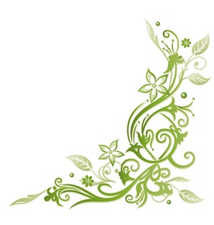 Flowers spring and summer time vector