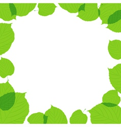 Green leaves frame on the white background vector