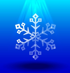 Snowflakes crystal under light vector