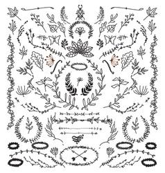 Hand drawn vintage design elements vector