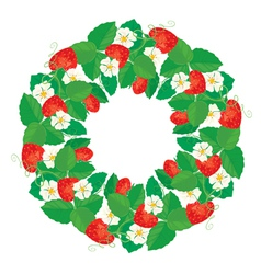 Strawberry circle 1 380 vector