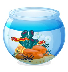 A water bowl and animals vector