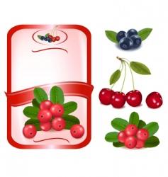 Label with cranberries vector